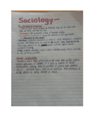 sociology-perspective-docx