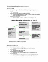 feb-28-health-belief-model-docx