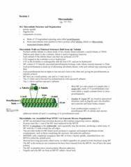 microtubules-doc