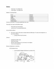 biomass-geo-thermal-docx