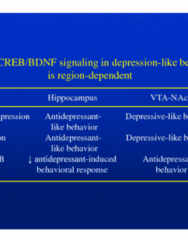 40-depression-4-li-pharmacotherapy-for-mood-disorders-ppt