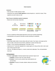 bouchard-notes-pdf
