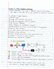 chem-281-chapter-7-pdf