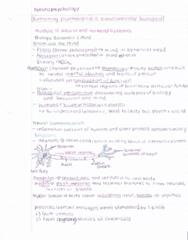neuropsych-lecture-pdf