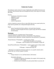 endocrine-system-doc