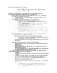 lecture-12-outcomes-docx