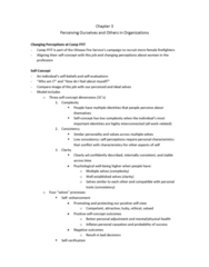 chapter-3-on-perceiving-ourselves-and-others-in-organizations-docx