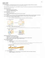 lecture-6-feb-25-bio-2b03-docx