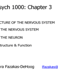 sept-20th-chapter-3-nervous-system-docx