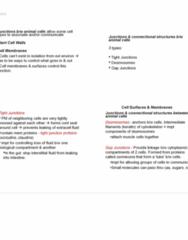 lecture-7-8-pdf
