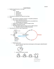 lecture-5-fungal-pathogens