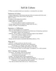 class-2-self-culture-doc