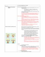 u8-sensorimotor-system-docx