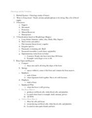 anatomy-notes-on-oct-10