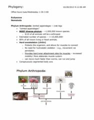 phylogeny-1028-docx