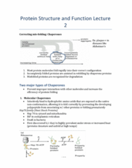protein-structure-and-function-lecture-2-summary-docx
