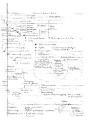 midterm-2-review-part-2-notes