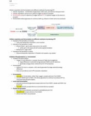 bio204-lecture-12