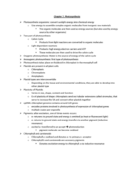 chapter-7-photosynthesis-docx