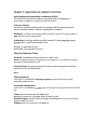 chapter-3-legal-issues-in-employee-selection-docx