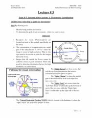 topic-5-sensory-motor-systems-3-visuomotor-coordination-docx