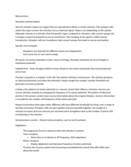 full-year-notes-neuroscience-docx
