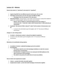 midterm-preperation-lecture-10-meiosis-docx