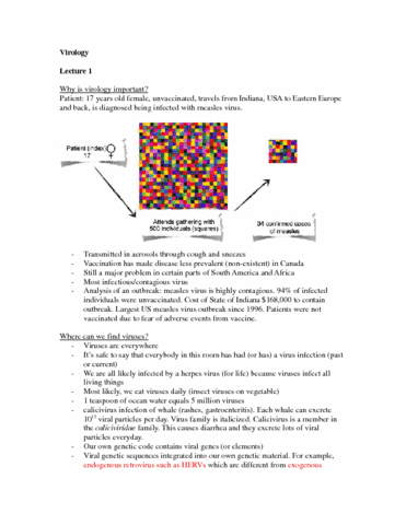 virology-notes-docx