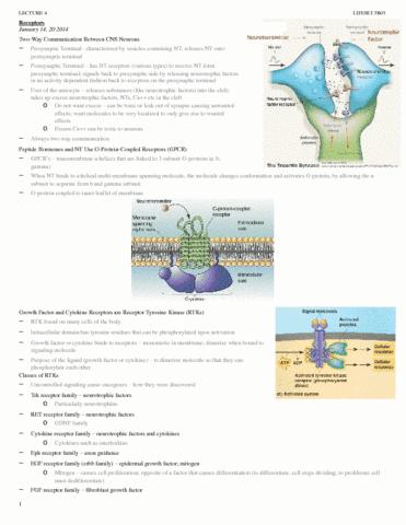 jan-14-20-receptors-lifesci-3b03-docx