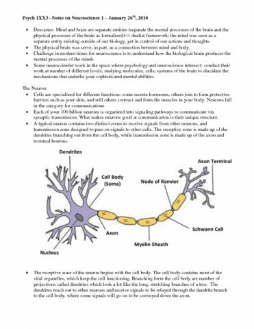 neuroscience-i-pdf
