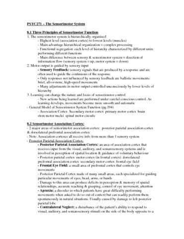 psyc271-chapter-8-the-sensorimotor-system-docx
