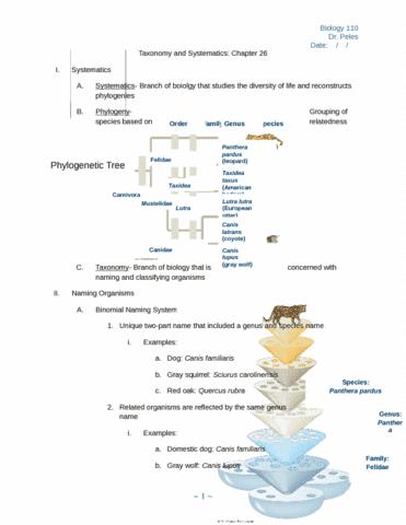 ch-26-taxonomy-and-systematics-exam-4-docx