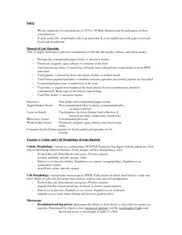 lab-notes-quiz-1-docx