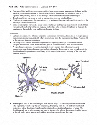 psych-1xx3-neuroscience-i-lecture-notes-pdf