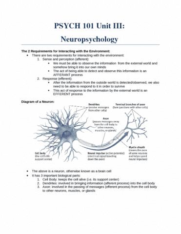 psych-101-unit-iii-neuropsychology