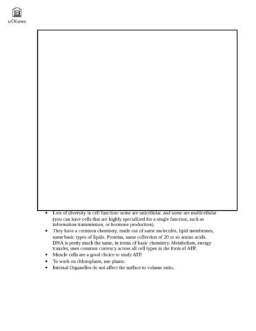 biology-1140-lecture-notes-docx
