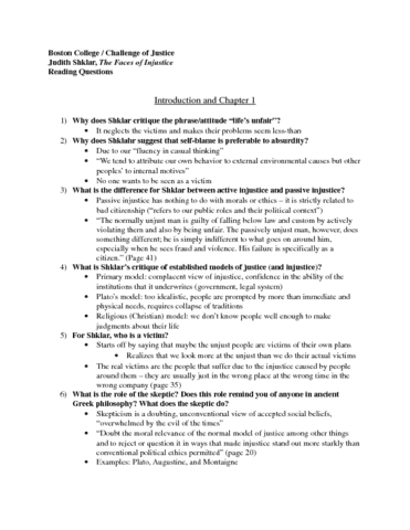 the-faces-of-injustice-reading-questions-docx
