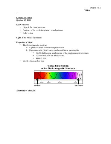 unit-2-lecture-10-vision-docx