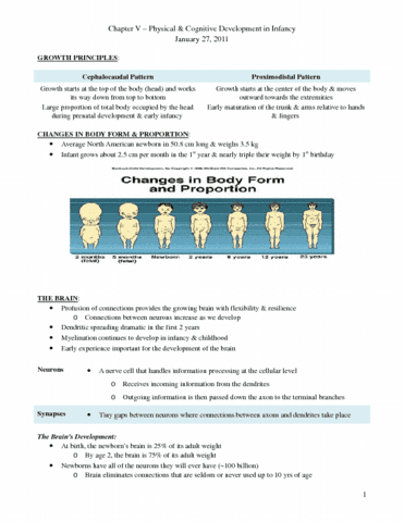 lecture-6-chapter-5-docx