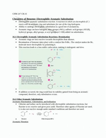 ch-16-summary-docx