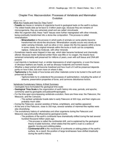 ar103-rn-ch-5-w8-pdf