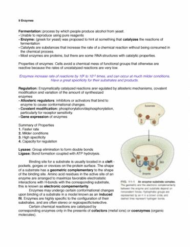 9-enzymes-pdf