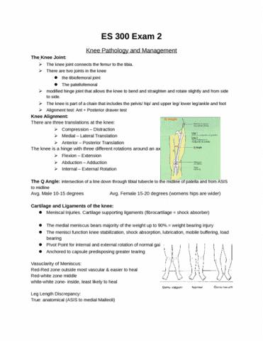 es-300-full-study-guide-exam-2