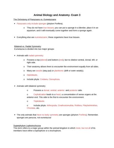 exam-3-study-materials