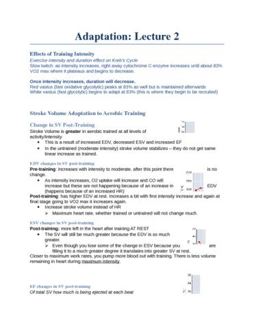 2-cardiovascular-adaptation-docx