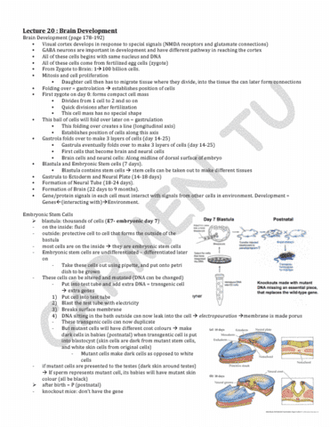 hmb200-2014-lecture-20-pdf