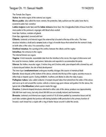 hlth-140-exam-notes-3