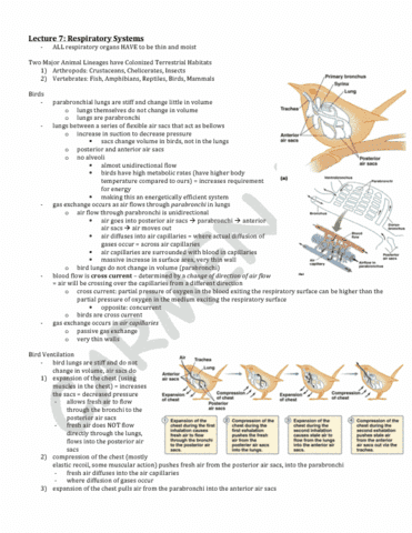 bio271h1-2014-section-2-notes-lectures-7-10-pdf