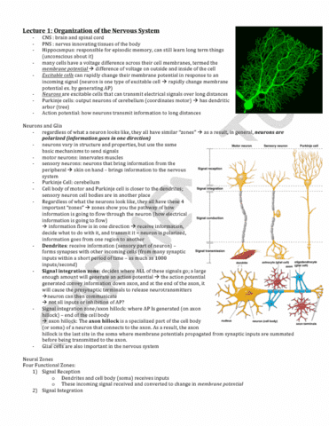 bio271h1-2014-midterm-notes-section-1-lectures-1-6-pdf