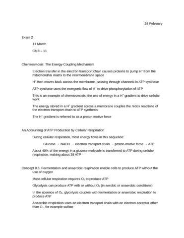 chemiosmosis-fermentation-anaerobic-respiration-catabolism